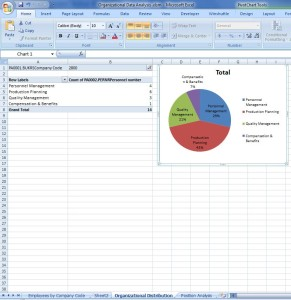 Analyze SAP Org Analysis Results in Excel